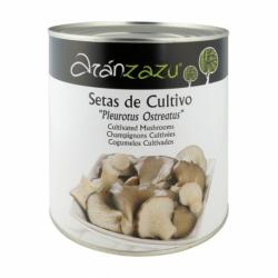 Tomate Triturado Natural Monodosis 22 g