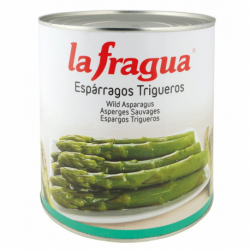 Yemas y Tallos de Espárragos Verdes I Lata 1/2 kg