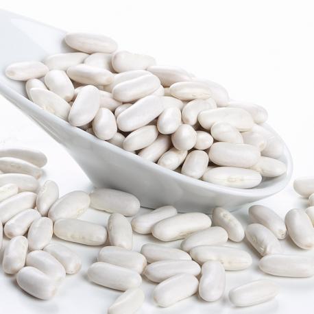 Ventresca de Atún Claro en Oliva Lata OL-120