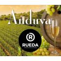 D.O. Rueda F.F.